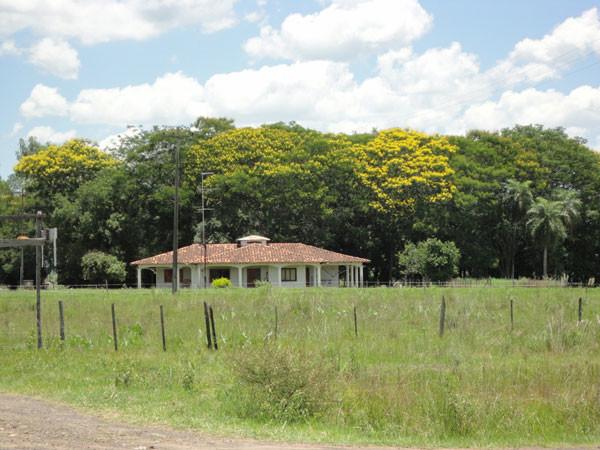 250 ha Farm bei Coronel Oviedo