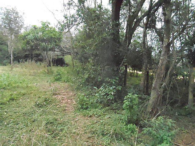 2,3 ha Grundstück in Altos
