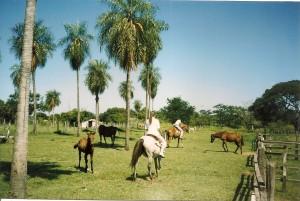 Ausritt rund um Paraguari in Paraguay