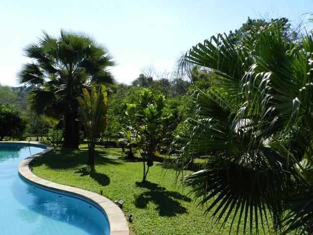 Anwesen mit 1,7 Hektaren in Ita, direkt am Asphalt