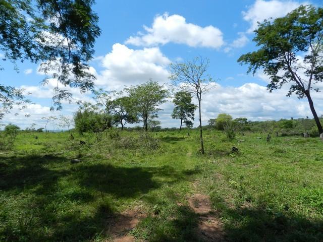 Granja bei Tobati, mit einer Fläche von 25 Hektaren