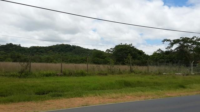 3 Hektare in Pirayú, direkt am Asphalt