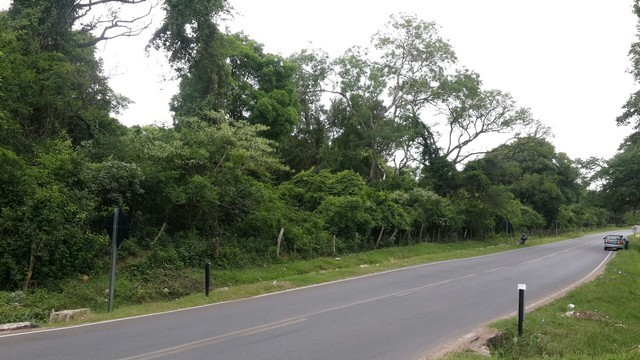 Eckgrundstück mit 8 Hektare in Ypacarai, direkt am Asphalt