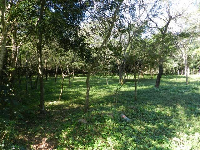 Ein Grundstücksangebot in San Bernardino