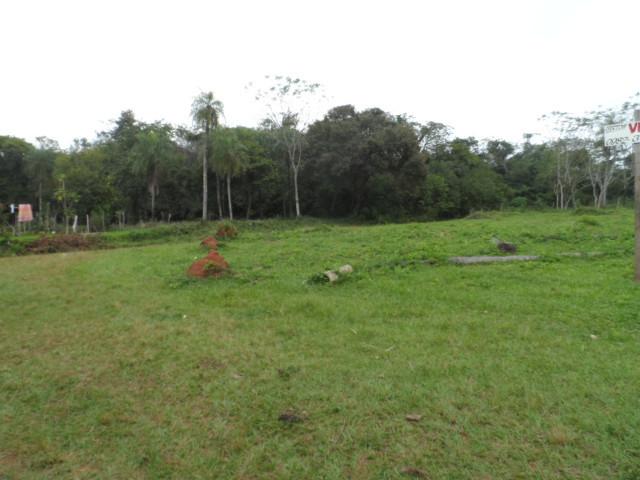 4 Grundstücke in Paraguarí