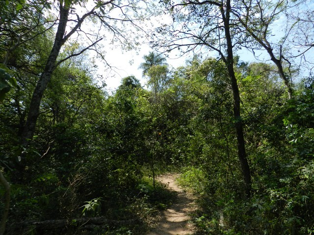 Property in San Bernadino, with a plot of 4400m2