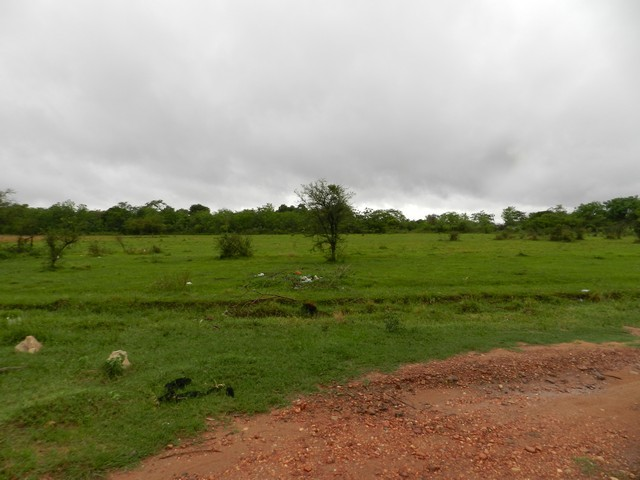 Grundstück bei Limpio