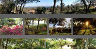 Immobilie mit 4 ha. und 4 Häusern mit Seeblick