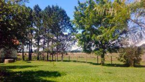 Anwesen zwischen Independencia und Villarrica