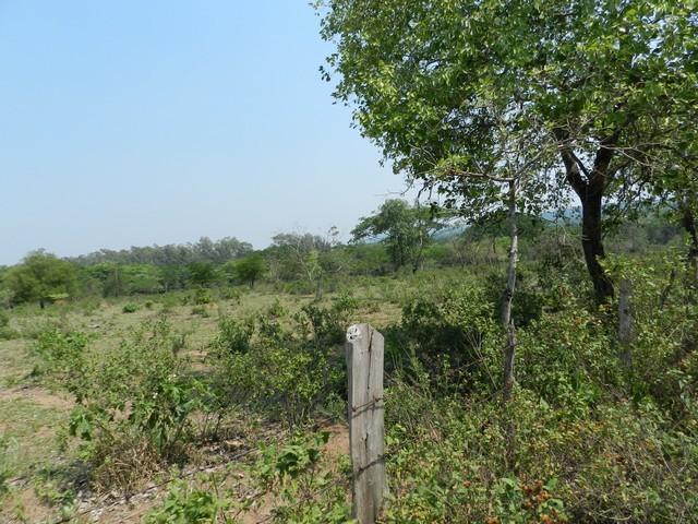2,4 ha Grundstück in San Bernardino