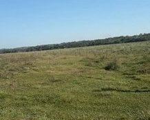 42 ha. Land bei Caapazá